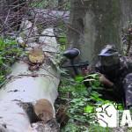 пейнтбол в лісі